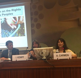 Andrea speaking OHCHR panel 2