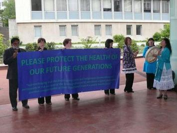 Arctic_Indigenous_Delegation_COP4_05-2009_ACAT